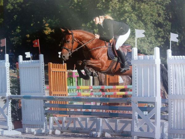 Photo de babaorum poney